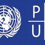 logo-PNUD-ONU